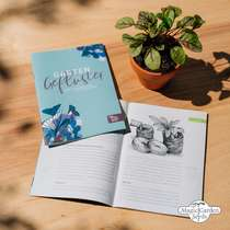 Piante alpine - Set regalo di semi #5