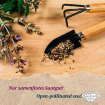 'Sweet & hardy melons' seed kit #5