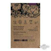 Mirtillo nero (Vaccinium myrtillus) biologico #2